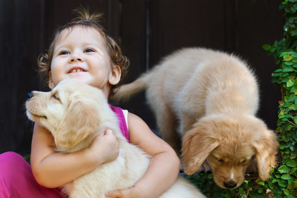 child with cute dogs