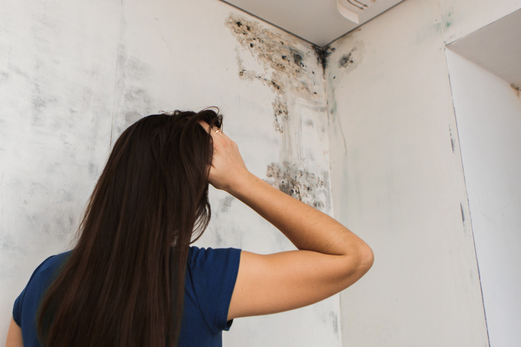 woman looking at a mold infested wall