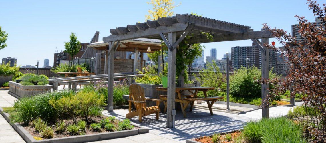 urban garden concept